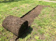 Zrolowana trawa - efekt pracy wycinarki L390